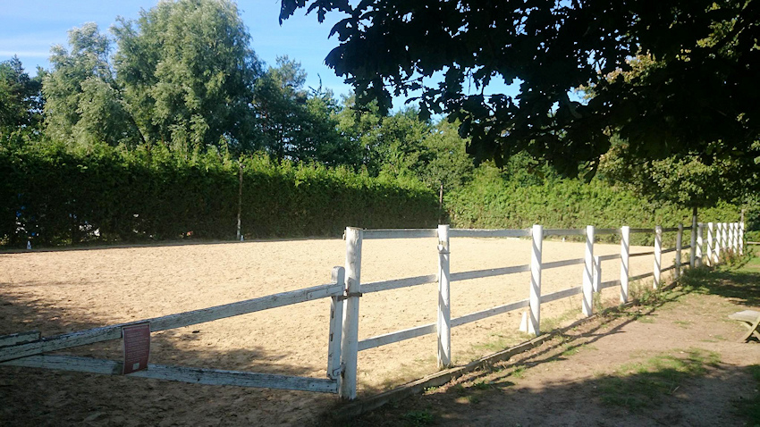 Livery Yard Riding Centre Equine Therapy in Byfleet and Surrey