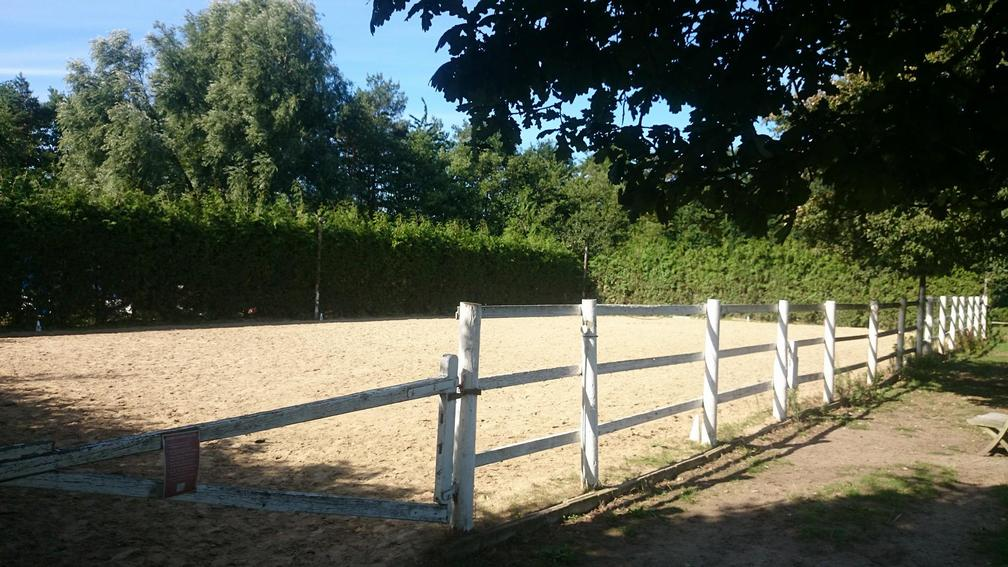 Livery and Riding Centre in Byfleet and Surrey